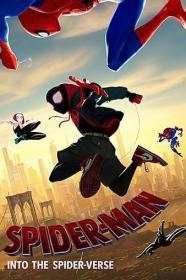 Spider-Man Into the Spider-Verse 2019 1080p WEB-DL H264 AC3-EVO[EtHD]