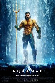 Aquaman 2018 1080p BluRay x264-SPARKS[rarbg]