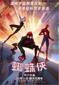 [电影天堂]蜘蛛侠:平行宇宙BD国英双语中英双字