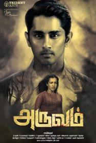 Aruvam (2019) [4K UHD - AVC - UNTOUCHED - MP4 - 10 4GB - ESubs - Tamil]