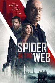 Spider in the Web 2019 BDRip 1 41Gb MegaPeer
